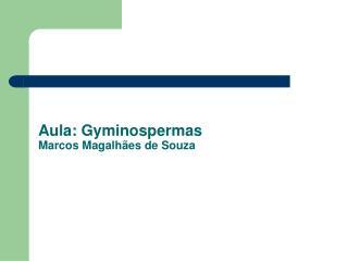 Aula: Gyminospermas Marcos Magalhães de Souza