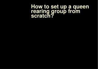 How to set up a queen rearing group from scratch?