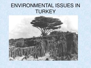 ENVIRONMENTAL ISSUES IN TURKEY