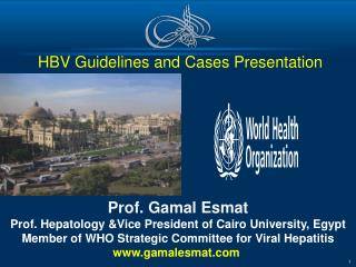 HBV Guidelines and Cases Presentation