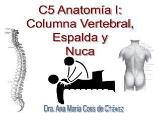 C5 Anatomía I: Columna Vertebral, Espalda y Nuca
