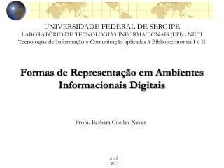 Formas de Representação em Ambientes Informacionais Digitais