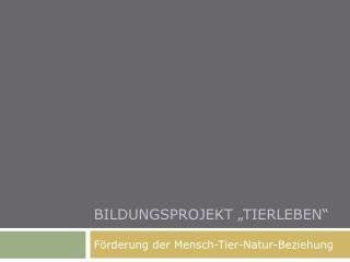 """Bildungsprojekt """"tierleben"""""""