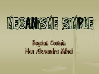 Bogdan Cosmin Hau Alexandru Mihai