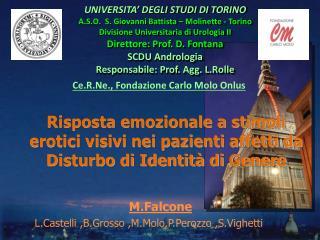 M.Falcone L.Castelli  , B.Grosso  , M.Molo , P.Perozzo  , S.Vighetti ,.