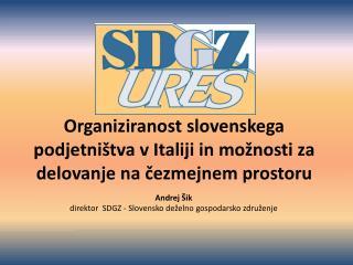 Andrej  Šik direktor  SDGZ -  Slovensk o  deželn o  gospodarsk o  združenj e