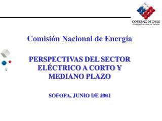 Comisi�n Nacional de Energ�a