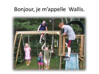 Bonjour, je m'appelle  Wallis.