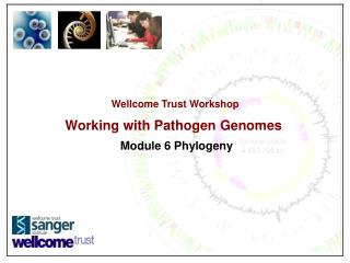 Wellcome Trust Workshop Working with Pathogen Genomes Module 6 Phylogeny