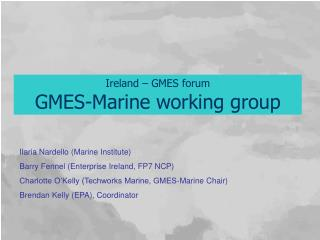 Ireland – GMES forum GMES-Marine working group