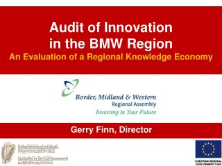 Audit of Innovation  in the BMW Region  An Evaluation of a Regional Knowledge Economy