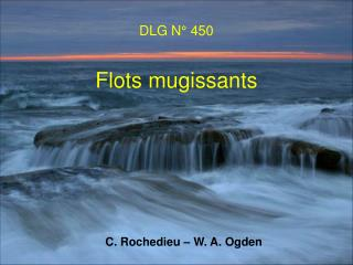 DLG N° 450 Flots mugissants