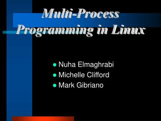 Multi-Process Programming in Linux