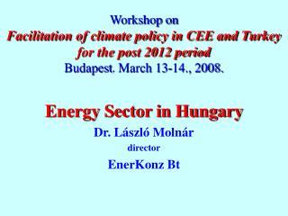 Energy Sector in Hungary Dr. László Molnár director EnerKonz Bt
