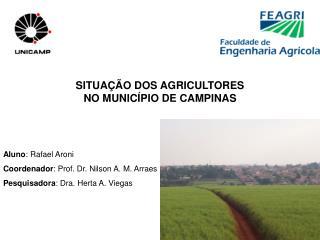 SITUA  O DOS AGRICULTORES NO MUNIC PIO DE CAMPINAS