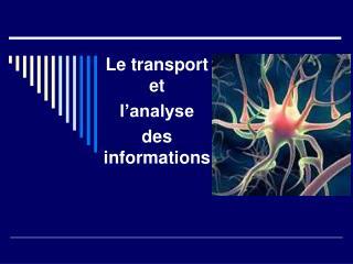 Le transport et  l analyse  des informations