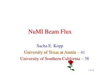 NuMI Beam Flux