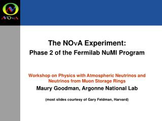 The NO n A Experiment: Phase 2 of the Fermilab NuMI Program