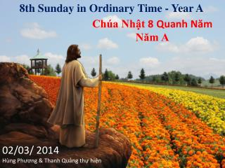 8th  Sunday in Ordinary Time - Year A