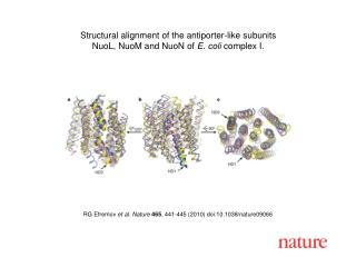 RG Efremov  et al. Nature 465 , 441-445 (2010) doi:10.1038/nature09066
