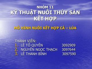 NHÓM 11 KỸ THUẬT NUÔI THỦY SẢN KẾT HỢP MÔ HÌNH NUÔI KẾT HỢP CÁ – LÚA
