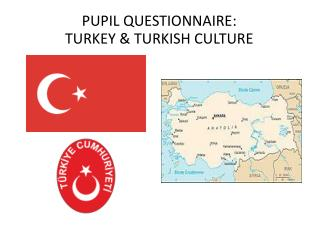 PUPIL QUESTIONNAIRE:  TURKEY & TURKISH CULTURE