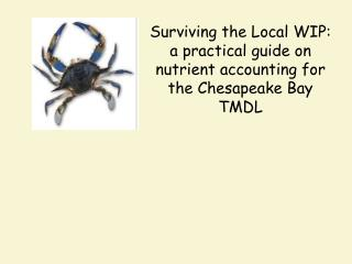 Surviving the Local WIP: a practical guide on nutrient accounting for the Chesapeake Bay TMDL
