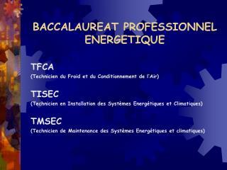 BACCALAUREAT PROFESSIONNEL ENERGETIQUE