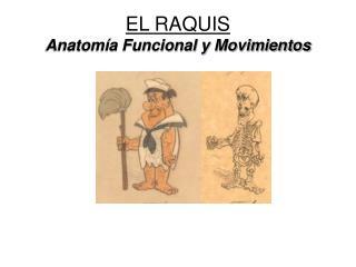 EL RAQUIS Anatomía Funcional y Movimientos