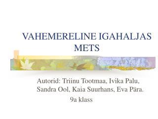 VAHEMERELINE IGAHALJAS METS