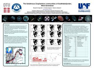 The Gelatinous Zooplankton communities of  Godthåbsfjorden, West Greenland