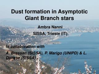 Dust formation in Asymptotic Giant Branch stars