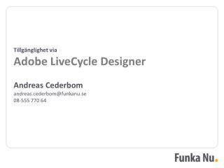 Tillgänglighet via Adobe LiveCycle Designer