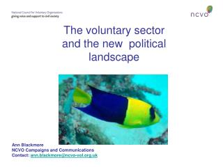 The voluntary sector and the new  political landscape