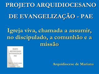 PROJETO ARQUIDIOCESANO DE EVANGELIZA  O - PAE