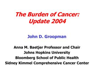 The Burden of Cancer: Update 2004