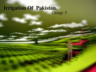 Irrigation Of  Pakistan.