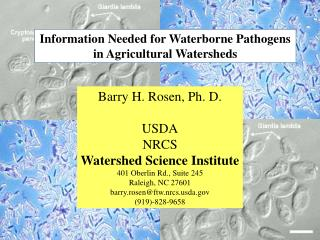 Information Needed for Waterborne Pathogens in Agricultural Watersheds