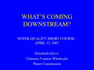 WHAT'S COMING DOWNSTREAM?