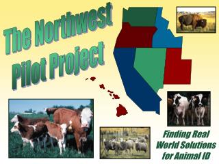 The Northwest Pilot Project