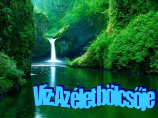 Víz: Az élet bölcsője