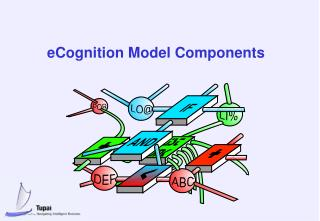 eCognition Model Components