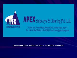 PROFESSIONAL SERVICES WITH HEARTLY EFFORTS
