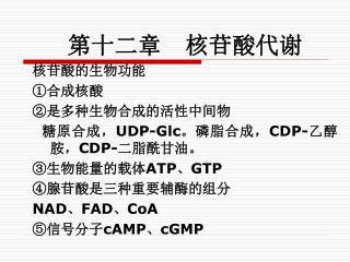 第十二章 核苷酸代谢 核苷酸的生物功能 ①合成核酸 ②是多种生物合成的活性中间物   糖原合成, UDP-Glc。 磷脂合成, CDP- 乙醇胺, CDP- 二脂酰甘油。