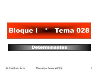 Bloque I   *   Tema 028