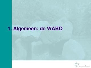 1. Algemeen: de WABO