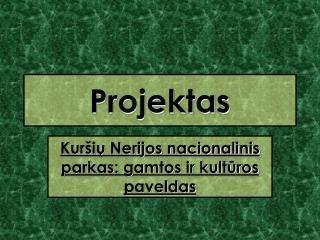 Projektas