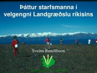 Starfsreynsla sem stjórnandi