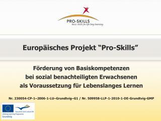 """Europäisches Projekt """"Pro-Skills"""""""