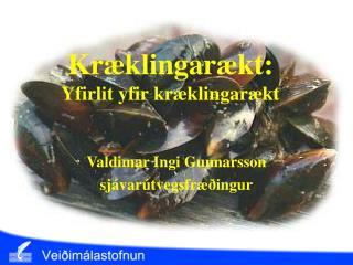 Kræklingarækt : Yfirlit yfir kræklingarækt